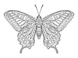 Tekening Vlinder Fotos Afbeeldingen En Stock Fotografie 123rf