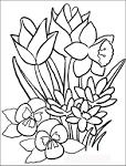 Цветы раскраски для детей онлайн
