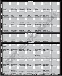 best 25 insanity workout schedule ideas on insanity