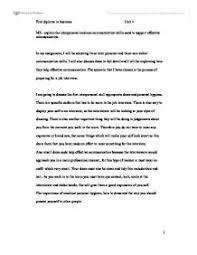travel to usa essay writing