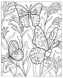 Butterfly Coloring Pages Free Table Butterfly Coloring Pages