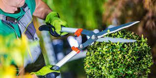starting your gardening business