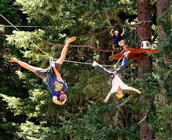 kids tree houses with zip line. Modren Zip Click For Bigger Pic On Kids Tree Houses With Zip Line