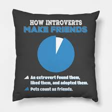 Introvert Chart How Introverts Make Friends Funny Pet Lover Dog Cat Pie Chart Design