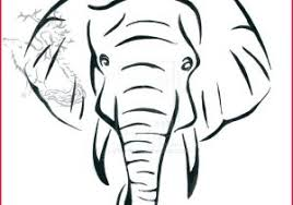 Baby Elephant Drawings Baby Elephant Drawing 170146 Elephant Pencil Sketch Baby Elephant