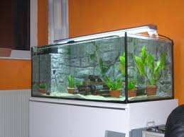 how to make your own aquarium soil