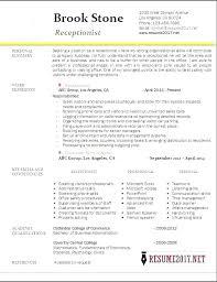 Medical Spa Receptionist Resume Sample Secretary Stanmartin Beauteous Spa Receptionist Resume