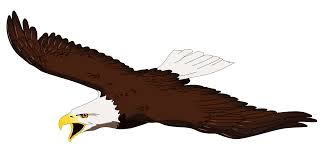 eagles clipart free download. Beautiful Free Images For U003e Clip Art Soaring Eagle  Birds Pinterest Art  Eagles Clipart Free Download