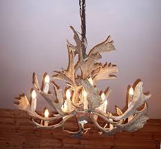 hidalgo fallow deer antler chandelier 17 antler 16 light