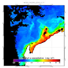 Chlorophyll Charts To Catch More Fish Buoyweather Com