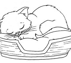 Small Picture Kitten Coloring Page Best Coloring Pages adresebitkiselcom