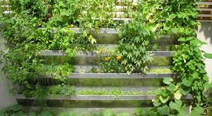 Small Picture Vertical Vegetable Garden Rises in Style Urban Gardens