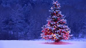 New_Year_wallpapers_Lonely_decorated_Christmas_tree_in_the_forest_047669_