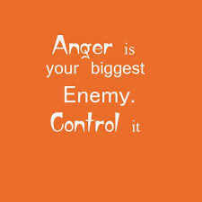 Anger Quotes Amazing Anger Is Your Biggest Enemy Quote Amo