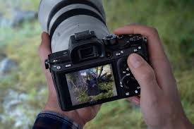 Best Sony Full Frame A Series Camera Which Is Right For You