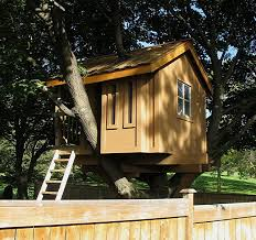 17 Tree Houses For AdultsHow To Build A Treehouse For Adults