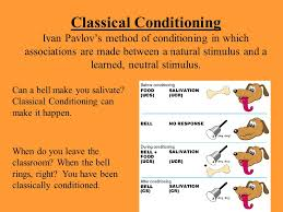 Classical Conditioning In The Classroom Simon Gipps Kent Top 10 Classical Conditioning Definition