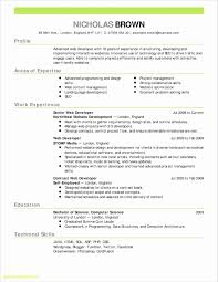 Teller Job Description For Resume Inspirational New Web Developer ...