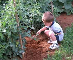 the importance of gardening during the