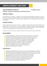 Information Technology Resume Sample Information Technology