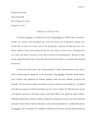 Example Summary Essay Example Of A Response Essay Magdalene Project Org