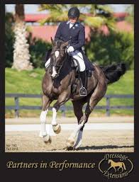 Pikeur Diana Size Chart Dressage Extensions Catalog 162 By Dressage Extensions Issuu