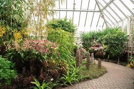 chicago botanic garden asia in bloom