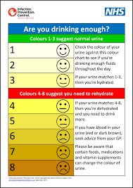 Are You Drinking Enough Poster Infection Prevention Control