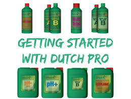 Getting Started With Dutch Pro Rutland Horticulturerutland