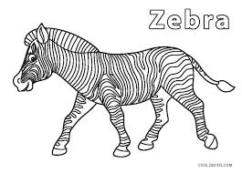 Large collection of free printable zebra coloring pages. Free Printable Zebra Coloring Pages For Kids