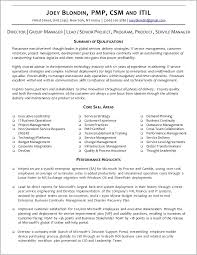 Professional Resume Writing Services In Nyc Resume Resume