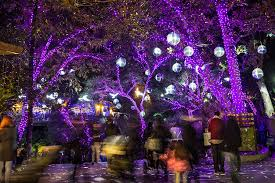 LA Zoo Lights | Los Angeles Zoo | Los Angeles, CA | Things to do ...