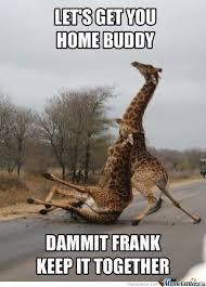 Image result for drunk meme
