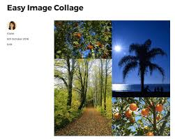 example of collage whats the best free plugin to make a wordpress photo collage