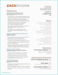 Digital Resume Template Free Luxury Marketing Cv Template The Resume