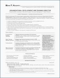 Best Sample Nursing Resume Examples Of Nursing Resumes For New ...