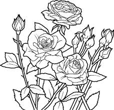 Small Picture Coloring Pages Of Roses And Skulls Sheets On Books With vonsurroquen