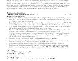 Best Resume Services Online Best Resume Writer Service Resume Gorgeous Best Online Resume Service