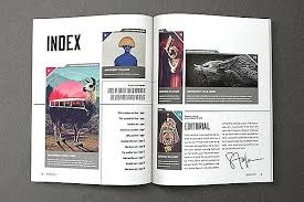 Pro Magazine Template Templates Free Indesign Layout
