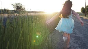 tall grass field sunset. Play Preview Video Tall Grass Field Sunset V