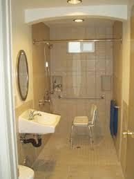 Handicap Accessible Bathroom Design