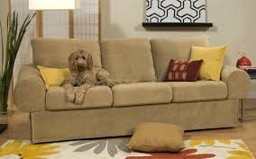 Dog friendly furniture Patio Pet Friendly Furniture Fabric Decoration Pet Friendly Sofa Pet Friendly Couches Upholstery Fabric Pet Regarding Pet Parsinoco Pet Friendly Furniture Fabric Decoration Pet Friendly Sofa Pet