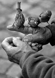 Резултат с изображение за доброта