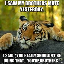 28 of the Most Offensive Terrible Tiger Memes. Prepare to get your ... via Relatably.com