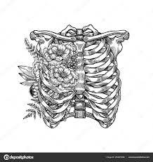 Hrudníku Tetování Na žebra