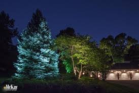 landscape lighting trees. Contemporary Trees A Cool White LED Landscape Lighting Bulb Creates A Subtle And Natural Way  To Enhance Intended Landscape Lighting Trees P