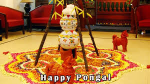 office decor for pongal. 35 Best Happy Pongal Greetings Picture Office Decor For N