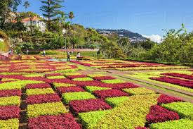 formal garden in madeira botanical gardens jardim botanico above the capital city of funchal madeira portugal atlantic europe