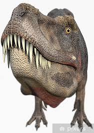 t rex dinosaurs big head wall mural