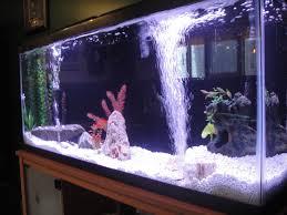 Fun Fish Tank Decorations Rock Bubbler Fishtankbank